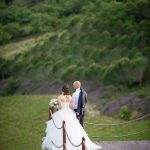 Vineyard Wedding Venue (10)