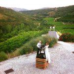 Vineyard Wedding Venue (7)