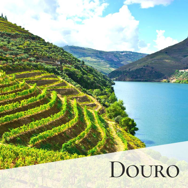 Douro - Getting married in Portugal