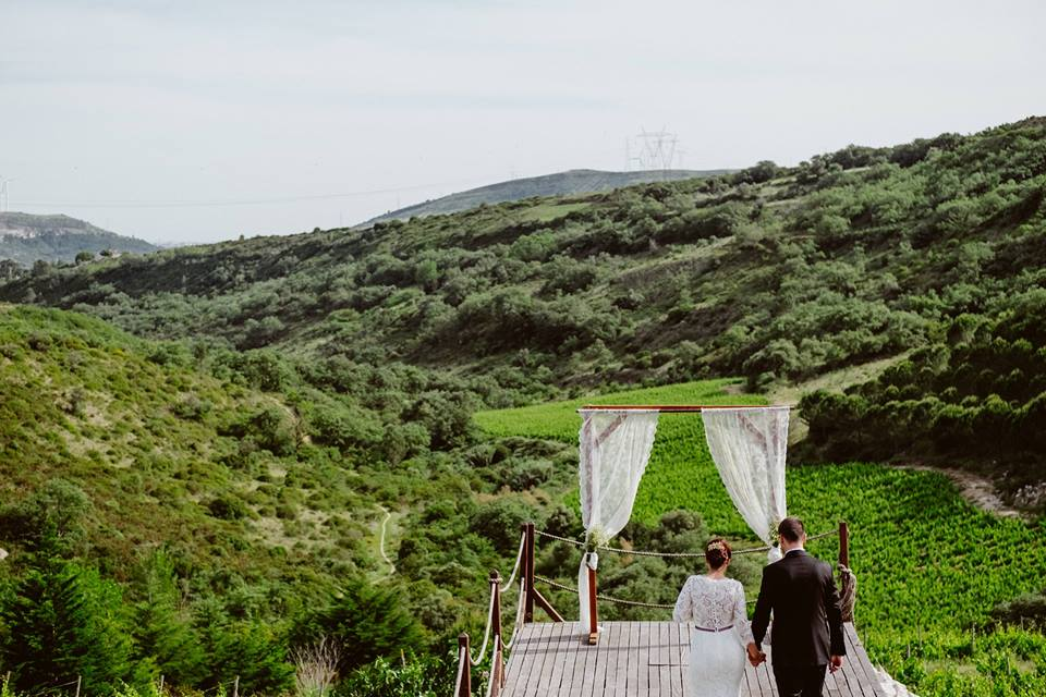 Vineyard Style Wedding