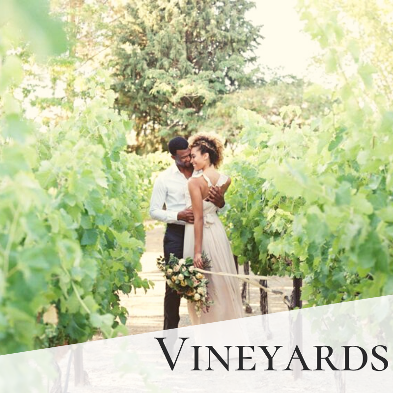 Vineyards Wedding