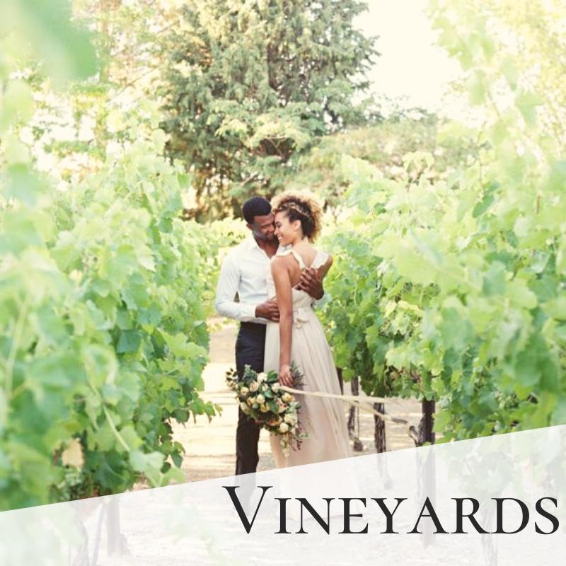 Vineyards Wedding