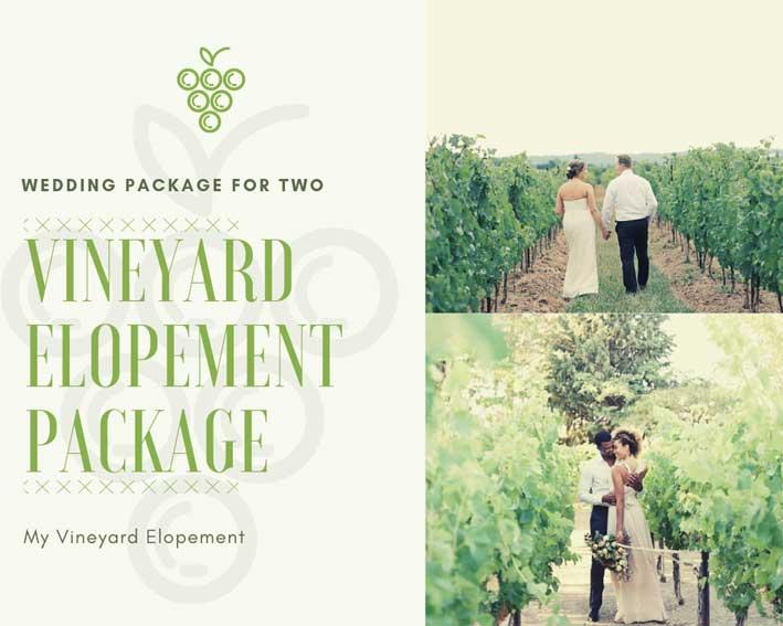 Casamento a Dois numa Vinha_Organizacao de Casamentos
