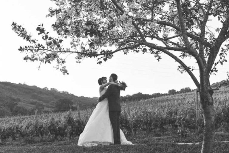 Pacote Casamento 2022 - Casamento numa Vinha_ (9)