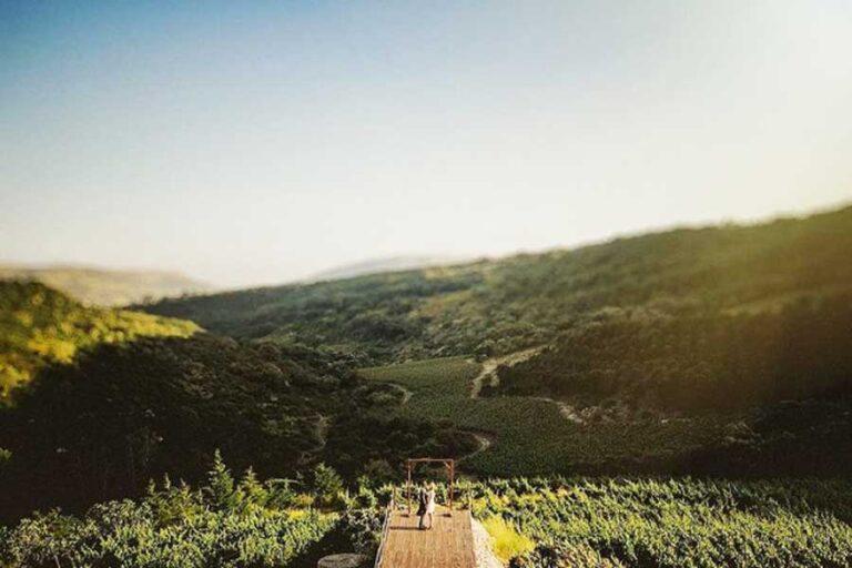 Vineyard Wedding Venue Wedding Planner in Portugal