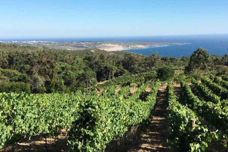 Pacote Mini Casamento 2022_Villa Privada_Sintra_Organizacao Casamentos Portugal