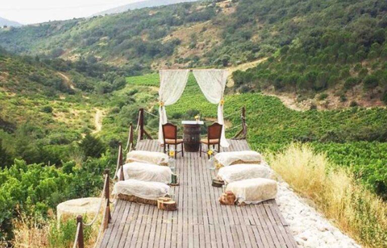 Vineyard-Wedding-Venue_Wedding-Planner-in-Portugal1